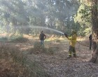 Un incendio quema mas de 2 hectáreas de terreno en el término municipal de Écija.