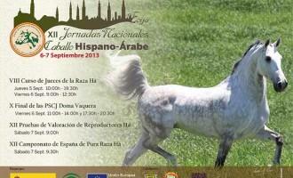 El Depósito de Sementales del CMCC de Écija acoge las XII Jornadas Nacionales del Caballo Hispano -Árabe
