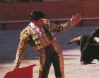Las faenas en la reaparición de Paco Ojeda estarán acompañadas con los cantes en directo de Estrella Morente y Paco Peña de Écija.