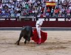 Disposición, firmeza y entrega del torero de Écija, Miguel Ángel Delgado, en Madrid