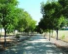 Han comenzado las obras del Plan Supera en la Vía Verde de la Campiña de Écija