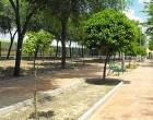 El Ayuntamiento de Écija registra un 90% menos de quejas vecinales en seguridad ciudadana y mantiene las demandas referentes a zonas verdes