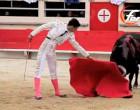 Triunfo del torero de Écija, Miguel Ángel Delgado, cortando la única oreja de la corrida celebrada en Saint Martín de Crau