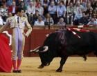 El torero de Écija, Miguel Ángel Delgado, toreará en la Feria de Sevilla