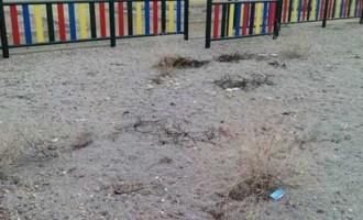 A QUIEN CORRESPONDA: Lamentable conservación del Parque de la Ronda del Ferrocarril