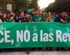 El diputado de Écija por IU en el congreso, Miguel A. Bustamante, en la manifestación de estudiantes contra la reválida