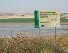 IU de Écija pide al gobierno municipal que trabaje en productos turísticos para la Laguna de Ruiz Sánchez.