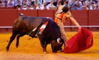 Detalles exquisitos del novillero de Écija, Ángel Jiménez, en la Maestranza (contiene video)