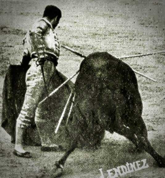 torero-bienvenida