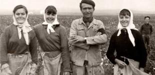 CAPÍTULO LI: DE ALGUNOS HECHOS, SUCESOS, ANÉCDOTAS: RECOLECCIÓN DE ALGODÓN, LOS TOROS DE 1969… por Ramón Freire