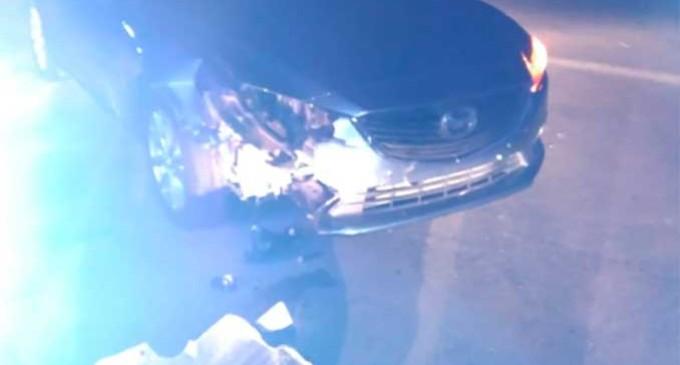 Un perro de la  raza mastÍn provoca en Écija un accidente de tráfico en la Avda. de la Guardia Civil