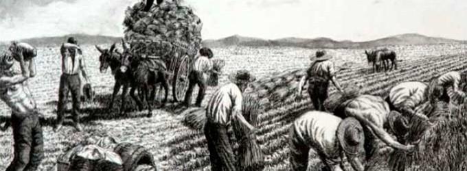 """EL ECIJANO BENITO MAS Y PRAT, EN 30 DE JULIO Y 8 DE AGOSTO DE 1886, BAJO EL TITULO DE """"CANTARES DE MI TIERRA"""", PUBLICÓ EN LA ILUSTRACIÓN ESPAÑOLA Y AMERICANA por Ramón Freire"""