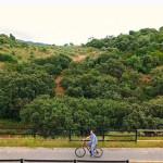 """EL GDR CAMPIÑA ALCORES presente en la reunión para trabajar por la propuesta de un nuevo sendero rural que una los municipios de """"Caminos de Pasión"""""""