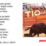 HOY EN ÉCIJA, TOROS SIN PLAZA DE TOROS por Manuel Martín Martín