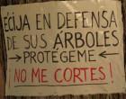 Manifestación en contra de la tala de árboles en la Plaza de San Juan de Écija (vídeo)