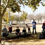 La Coordinación Medioambiental Astigitana (COMA) realizan labores de limpieza en zonas verdes de Écija