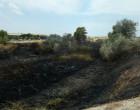 Eligio García, de IU-Écija, considera muy graves los continuos incendios que cada verano destruyen la Ribera del Genil